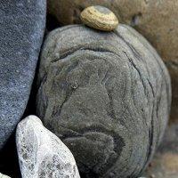 Каменная музыка :: Ирина Фирсова