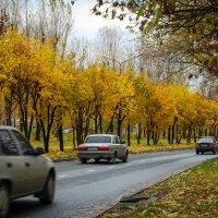 Осенний город :: Денис Белов