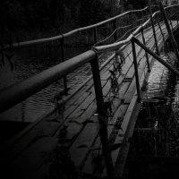 Старый мостик :: Дмитрий Кошкаров