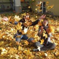 Такого листопада давно не знали здешние места :: Дмитрий Ерохин