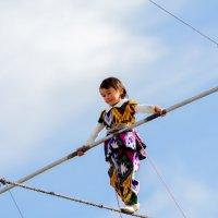 Трехлетняя канатоходка 3 :: Александр Неустроев