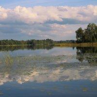вэллен в сентябре :: liudmila drake