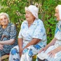 Бабушки - старушки :: Валерий Талашов