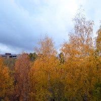 кажется дождь собирается... :: Светлана