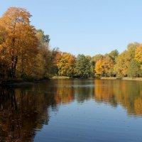 Задумчивая осень :: Вера Моисеева