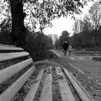 Осень :: Владимир Бессолицын