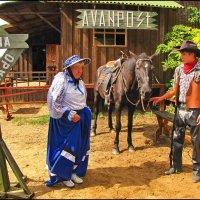 Жители ранчо. :: Ирина Нафаня