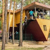 Дом вверх дном :: Николай Мухачев