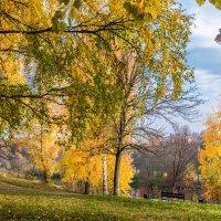 Осенний парк :: Владимир Буравкин