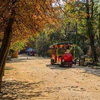 Осень в парке :: Константин Бобинский