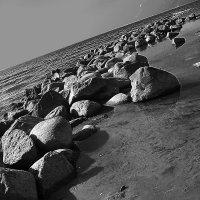 Финский залив :: irina Савченко