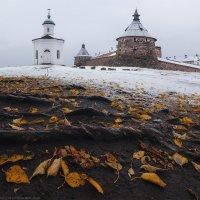 Первый снег :: Александр Бобрецов