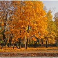 Осенняя пора - очей очарование........ :: Анатолий Михайлович