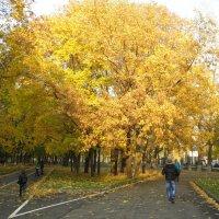 Золотая осень :: Алиса Калугина
