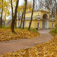 прогулка в осеннем парке :: Екатерина Рябцева
