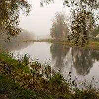 Утро туманное. :: Ирина Чикида