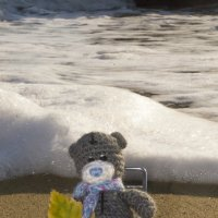 """""""Отпуск, море, солнце, пляж... не хватает мне сейчас!"""" :: Mishka-D2008 ( Мишкина )"""