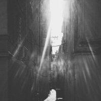 Красота рядом, оглянись. :: Олеся Сова