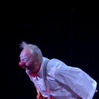 ЛИЦЕДЕИ. Фестиваль Клоунов. :: Saniya Utesheva