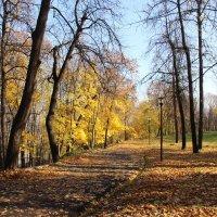 Александровский сад 1 :: Анна -