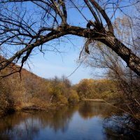 Осенняя речка :: Андрей Примаченко