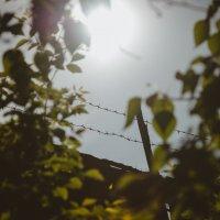 Солнце свободы :: Дмитрий Часовитин