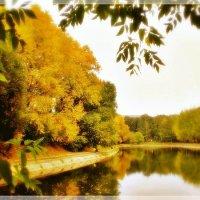 Золотая осень :: Ирина Князева