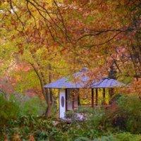 Осень в японском саду :: Дак -