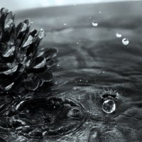 bump in drops of water :: Halyna Hnativ