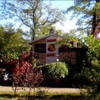 Уютное кафе в парке :: Татьяна Пальчикова