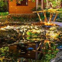 Осень в нашем дворике :: Николай Николенко