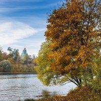 Осень у Серебряного бора. Москва :: Николай