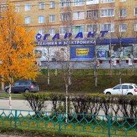 Осень в городе :: Галина Новинская