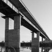 Под мостом :: Андрей Кулаков