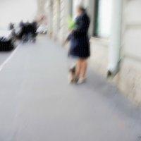 Дама с собачкой :: sv.kaschuk