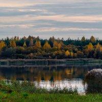 Осень на Шумилинском озере. :: Анатолий Клепешнёв