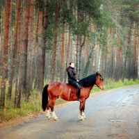 в лесу :: Кристина Щукина