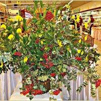 Осень в магазине.:) :: Валерия Комова