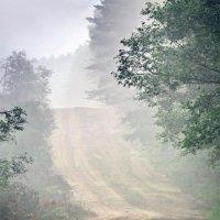 По дороге за туманом :: Юрий Савинский