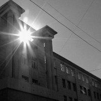 Солнце, есть только ты, а остальное позади. :: Евгения Зенченкова
