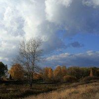 Осень :: OlegVS S
