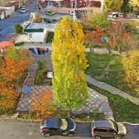 Наш двор :: Валерий Дворников