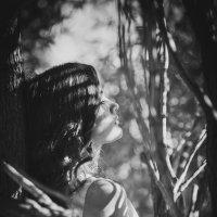 shadows :: Anastasia Zamesina