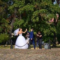 Фотосессия свадьбы :: Светлана Шарафутдинова