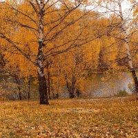 Позаметала осень дорожки :: Татьяна Ломтева