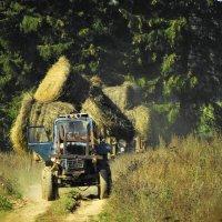 колхозные трактора в костромской области :: Михаил Жуковский