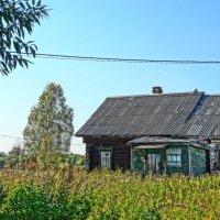 д Каплино, дом без хозяев :: Михаил Жуковский
