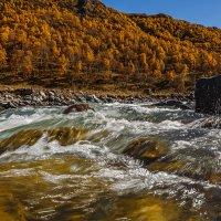 Водой холодной обливайся, если хочешь быть здоров! :: Вячеслав Филиппов