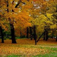 Осень... :: Ирья Раски