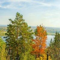 Красавица Осень :: Татьяна Белоусова
